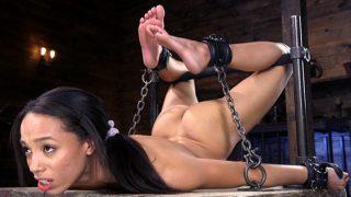 Alexis Tae in hard bondage